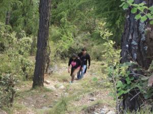 mashobra trekking